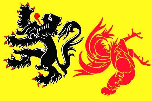 vlaamse-leeuw-vs-waalse-haan